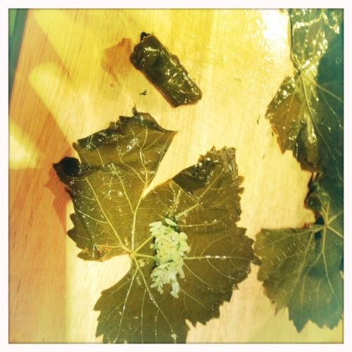 Stuffed vine leaves - with yoghurt sauce and warm!